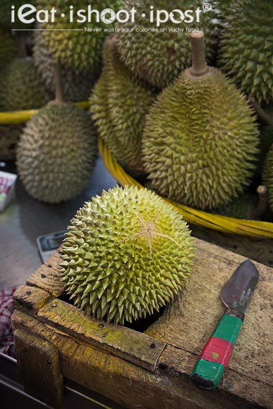 Traditional Durian support used for holding the Durian