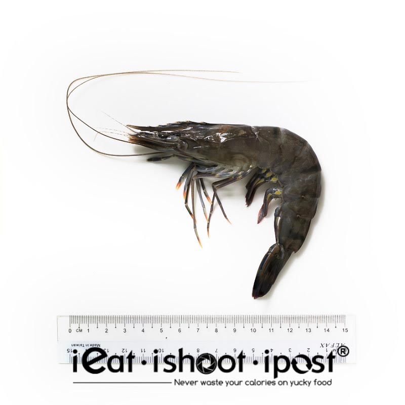 Giant Tiger Prawn - Farmed