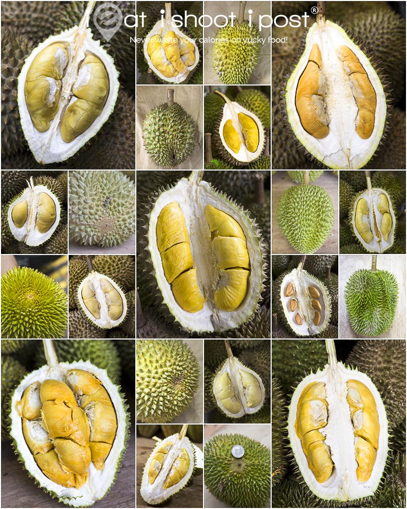 Ultimate Durian Guide Singapore