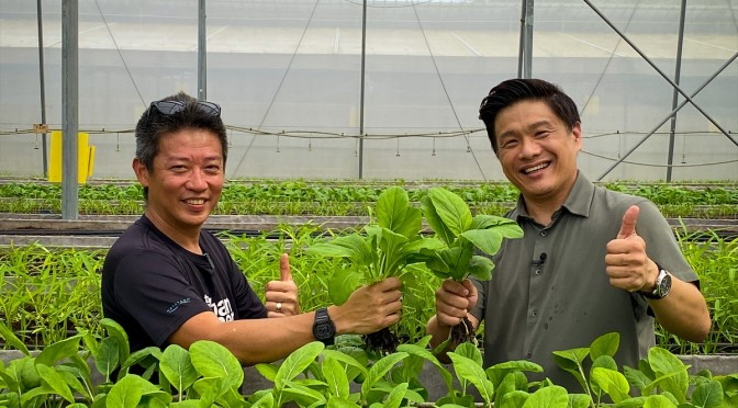 Red Dot Farm Co-Founder Mr David Tan and Dr Leslie Tay with a crop of baby Cai Xin